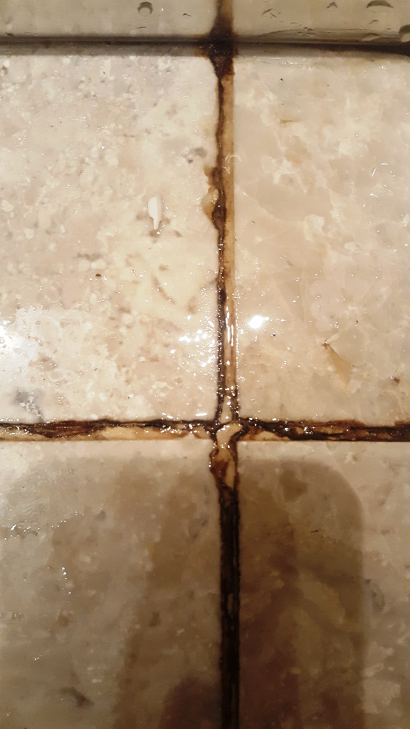 Marble Bathroom Tiles Before Cleaning Endcliffe Sheffield