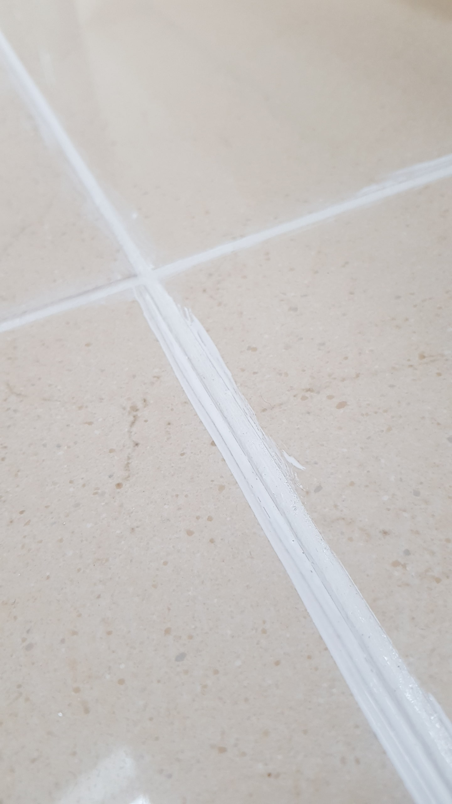 Porcelain Tiled Floor During Grout Recolouring Sheffield
